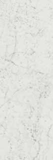 Italon ceramica Charme Extra wall project Carrara 25x75