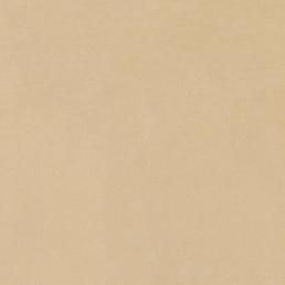 Italon ceramica Имэджин Беж 60x60