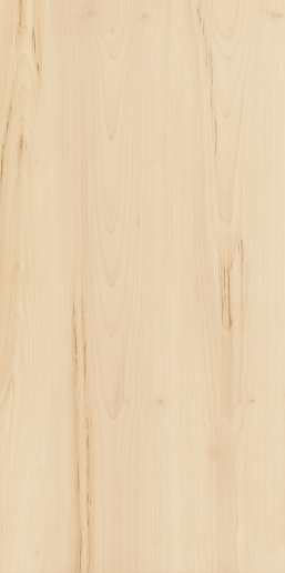 Italon ceramica Element Wood Acero 60x120