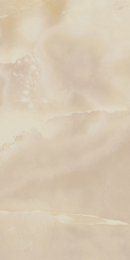 Italon ceramica Шарм эво флор проджект Оникс 60x120