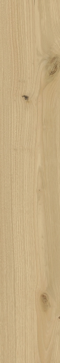 Italon ceramica Element Wood Faggio 20x120