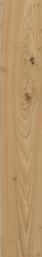 Italon ceramica Element Wood Olmo 20x120