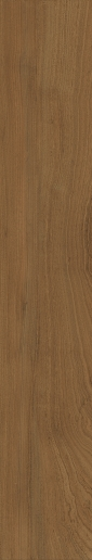 Italon ceramica Element Wood Mogano 20x120